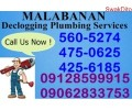 RICKY DECLOGGING PLUMBING SERVICES 560-5274/09128599915 need Jobs & Services